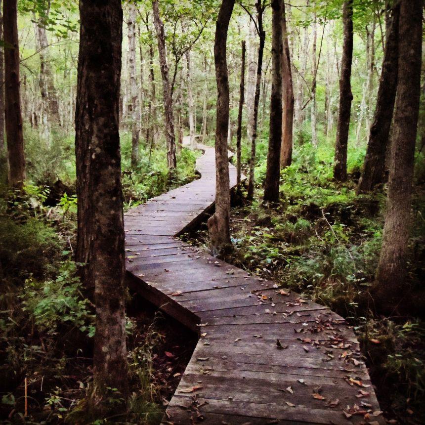 mallory trail2